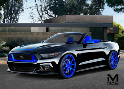 Black and Blue Mustang