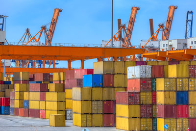 International Trans-Pacific Partnership