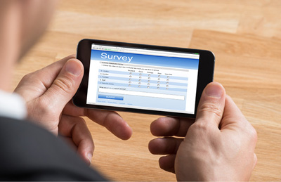 Web Surveys